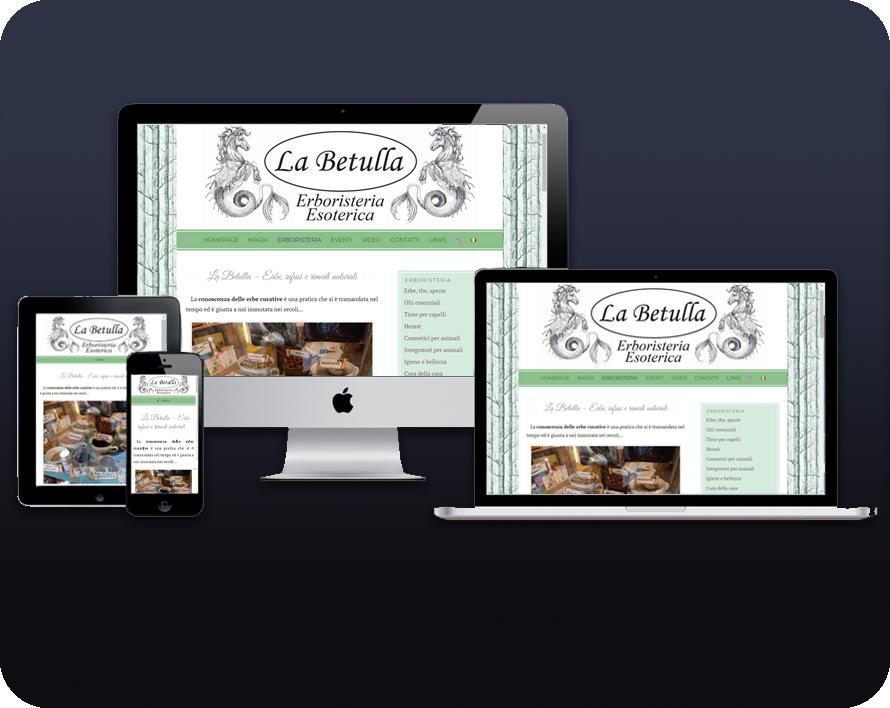 Web Design Responsive per siti business, personali o e-commerce